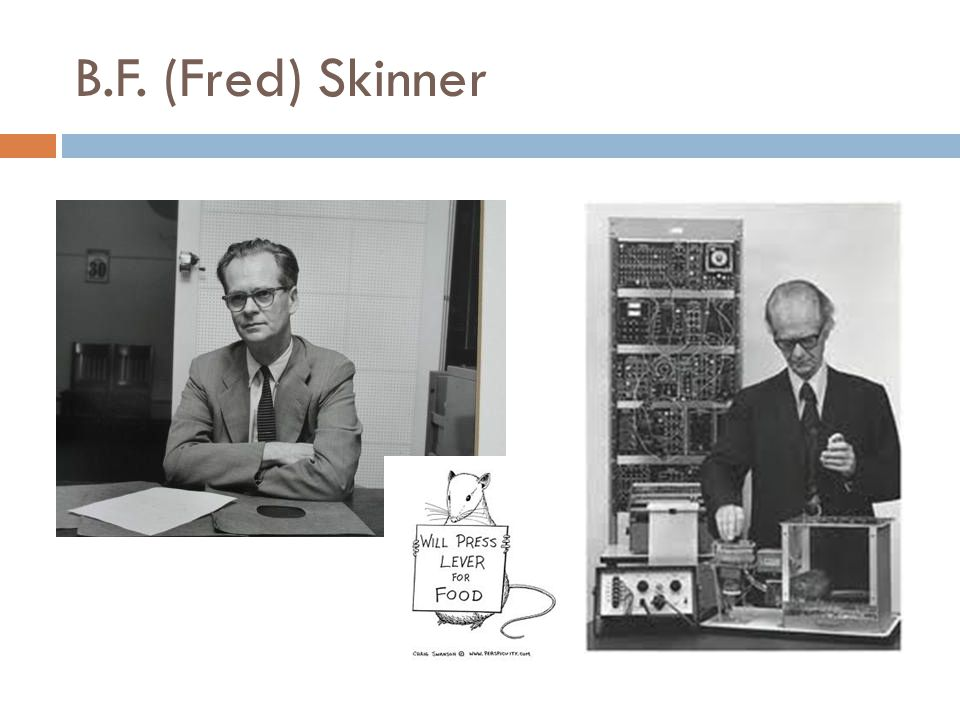 B.F. (Fred) Skinner