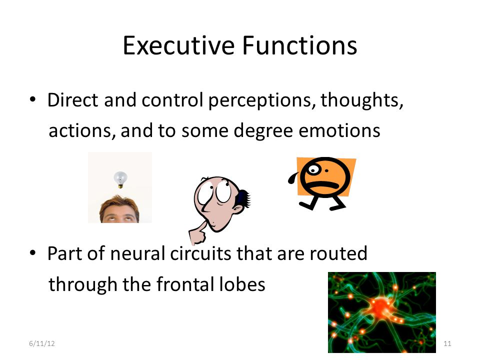 Executive Functions Direct and control perceptions, thoughts,