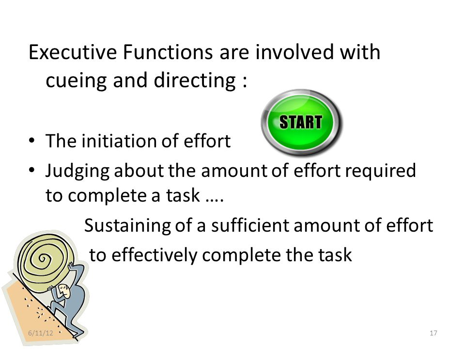 Executive Functions are involved with cueing and directing :