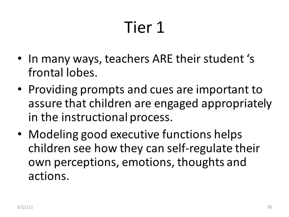 Tier 1 In many ways, teachers ARE their student 's frontal lobes.