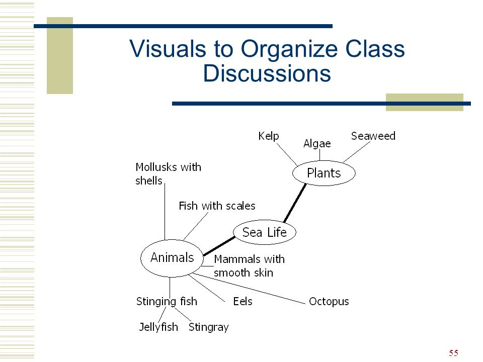 Visuals to Organize Class Discussions