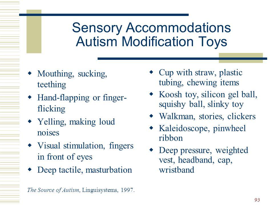 Sensory Accommodations Autism Modification Toys
