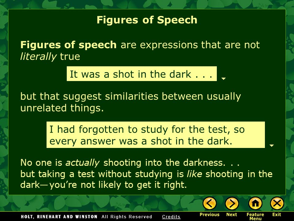 Figures of Speech Figures of speech are expressions that are not literally true. It was a shot in the dark . . .