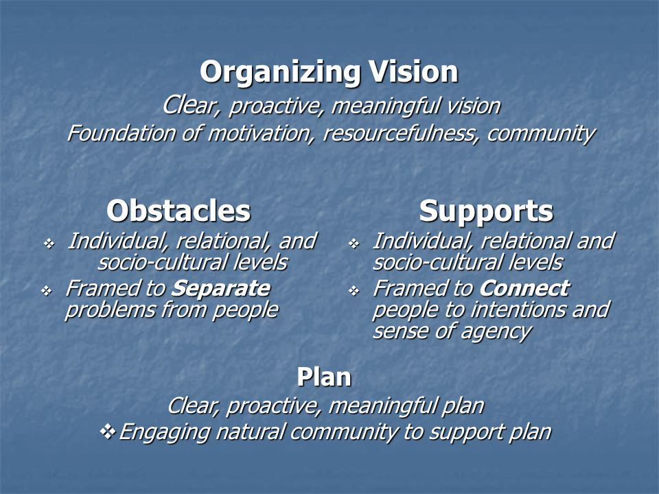 Organizing Vision Clear, proactive, meaningful vision Foundation of motivation, resourcefulness, community