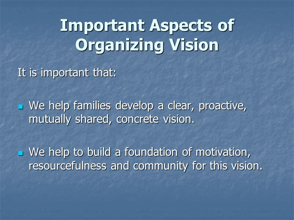 Important Aspects of Organizing Vision