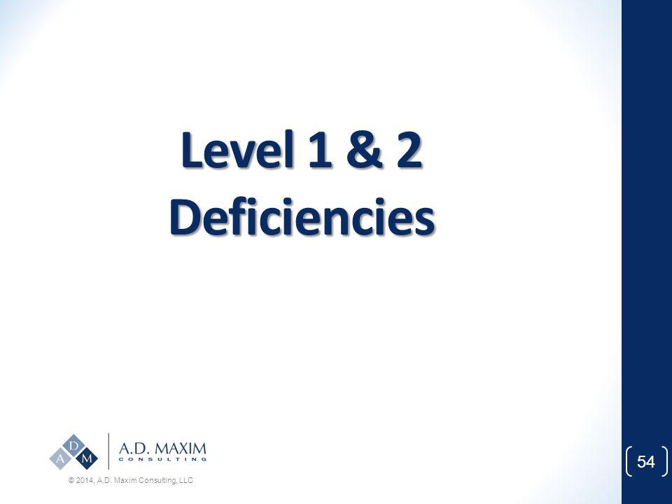 Level 1 & 2 Deficiencies © 2014, A.D. Maxim Consulting, LLC