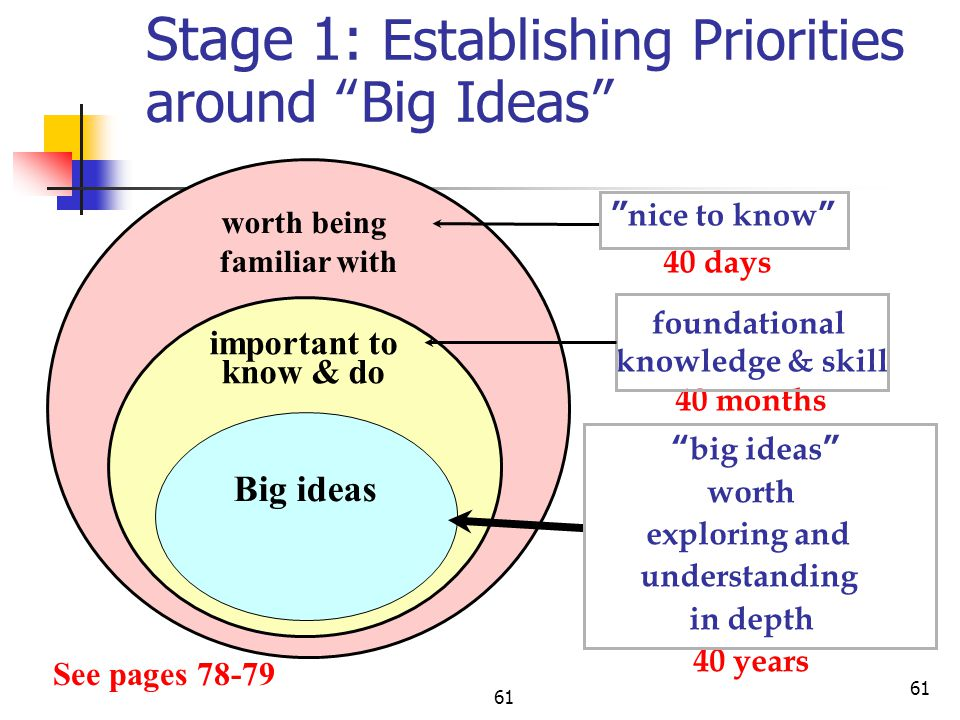 Stage 1: Establishing Priorities around Big Ideas