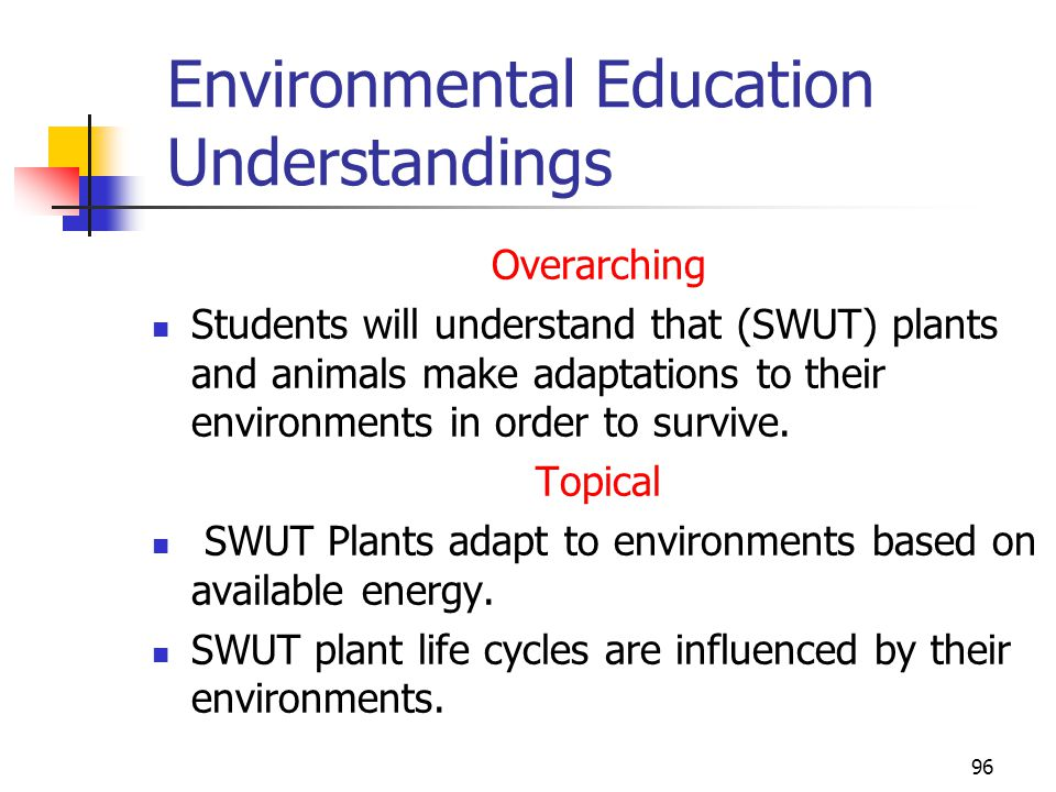Environmental Education Understandings