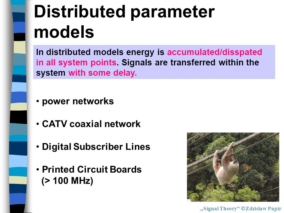 Distributed parameter models