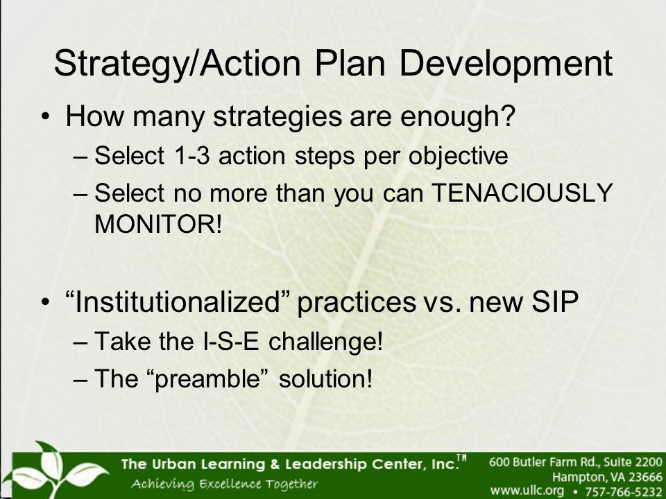 Strategy/Action Plan Development