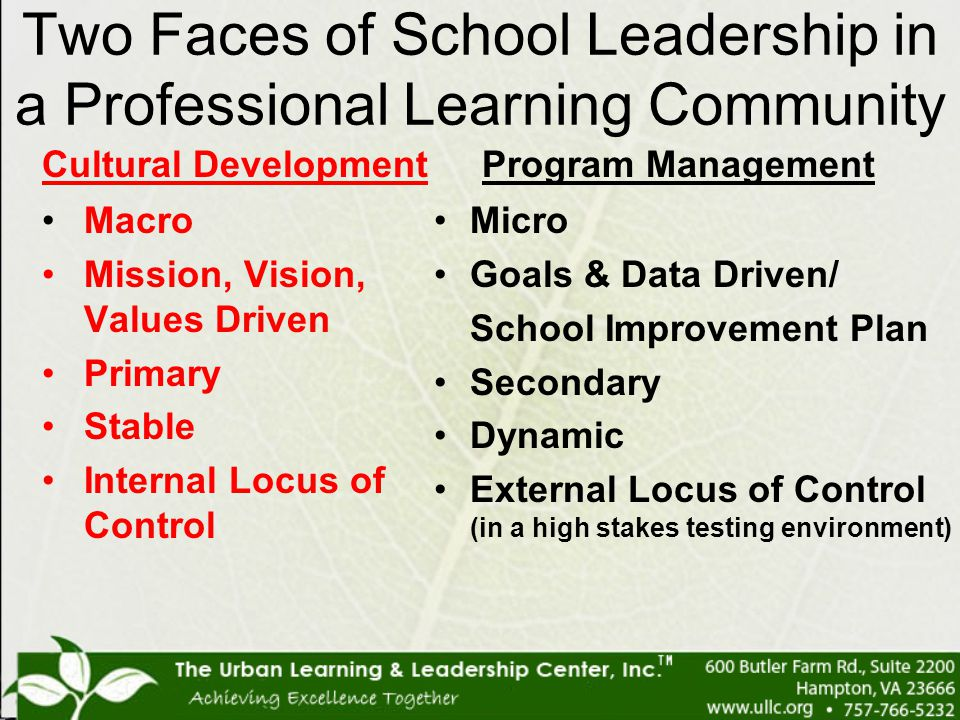 Two Faces of School Leadership in a Professional Learning Community