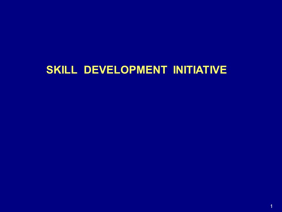 SKILL DEVELOPMENT INITIATIVE