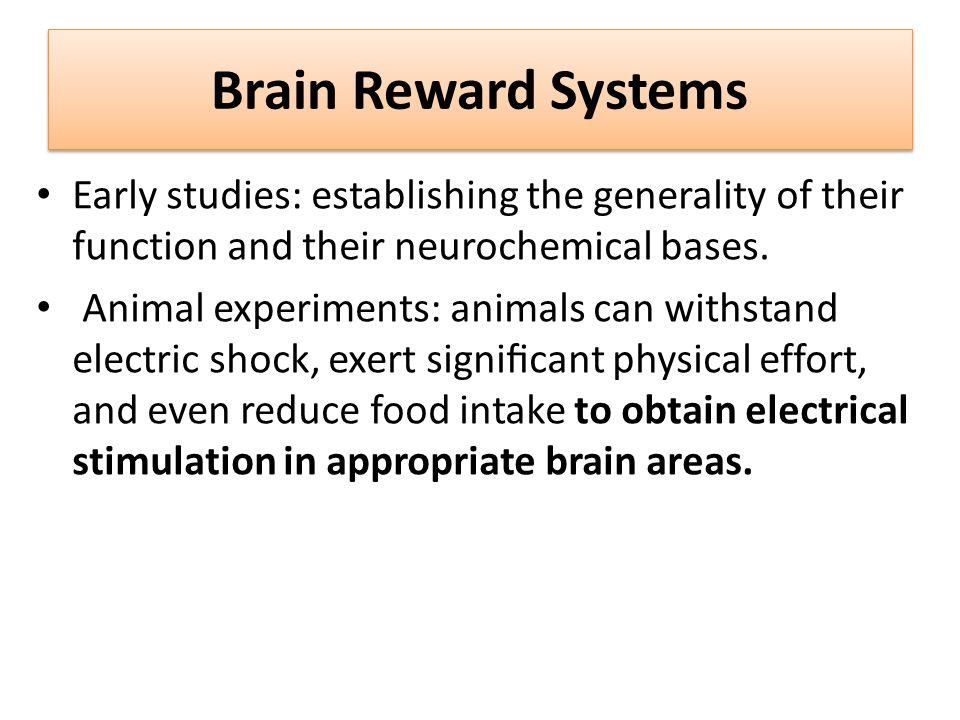 Brain Reward Systems Early studies: establishing the generality of their function and their neurochemical bases.