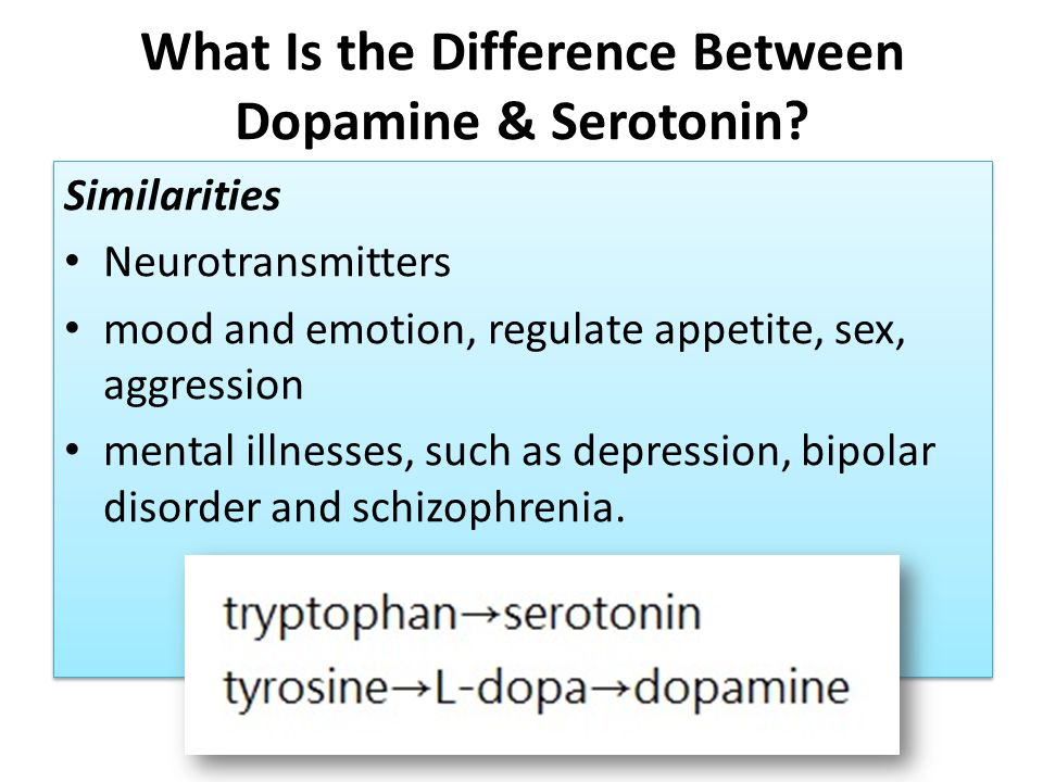 What Is the Difference Between Dopamine & Serotonin