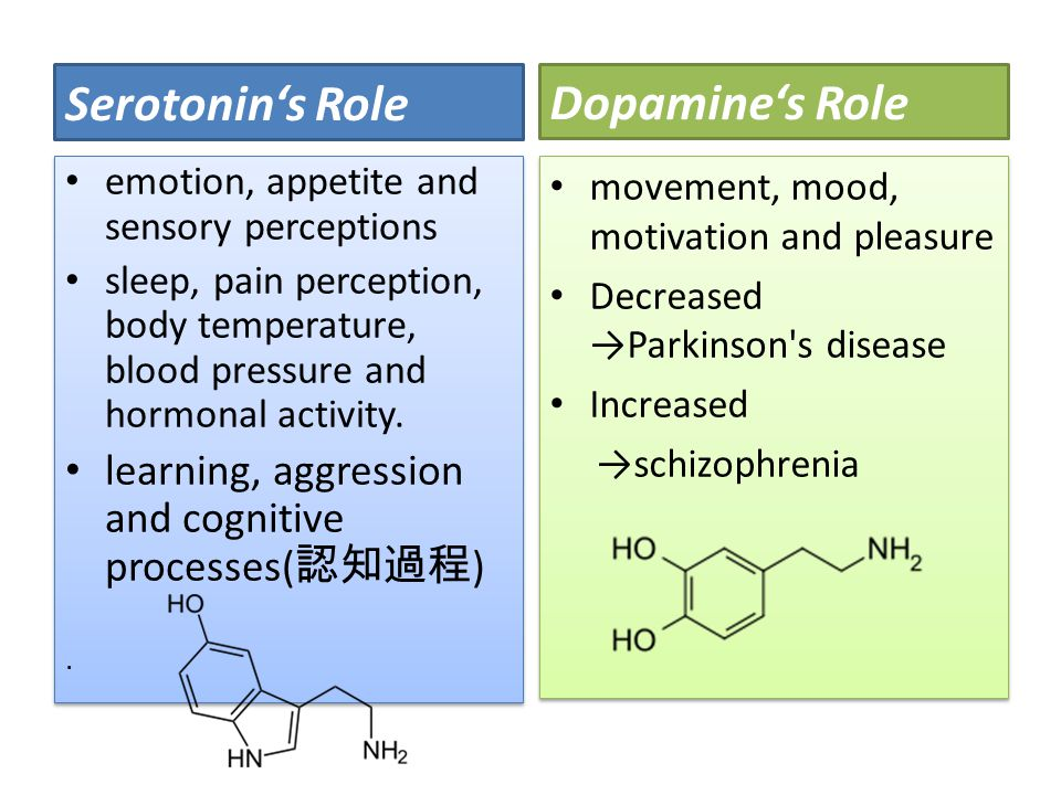 Serotonin's Role Dopamine's Role