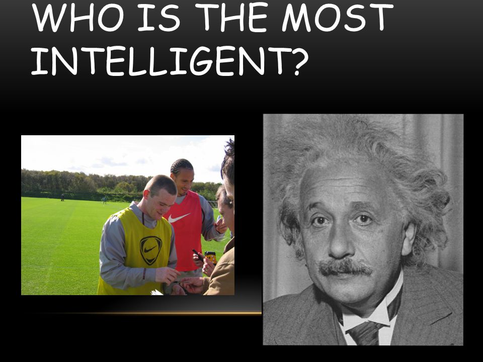 Who is the most intelligent
