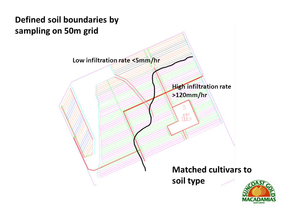 Defined soil boundaries by sampling on 50m grid
