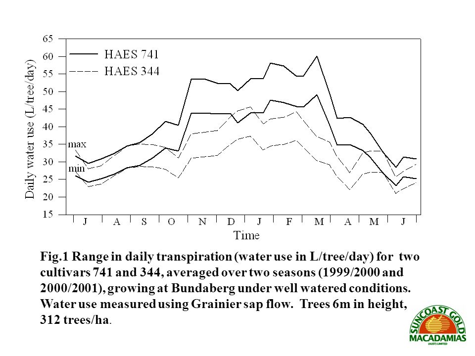 Fig.1 Range in daily transpiration (water use in L/tree/day) for two cultivars 741 and 344, averaged over two seasons (1999/2000 and 2000/2001), growing at Bundaberg under well watered conditions.