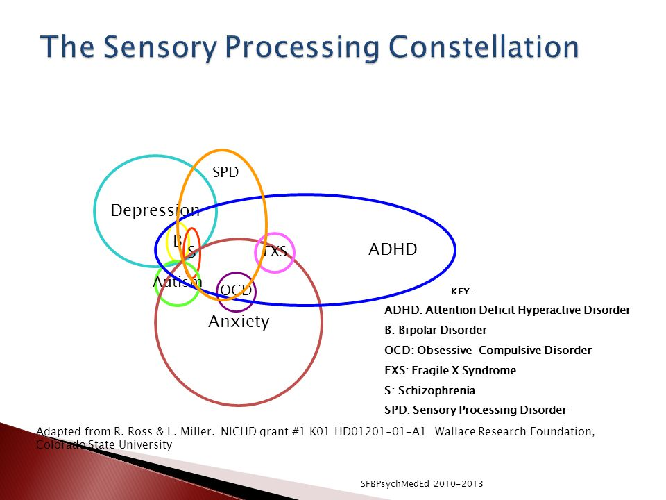 The Sensory Processing Constellation