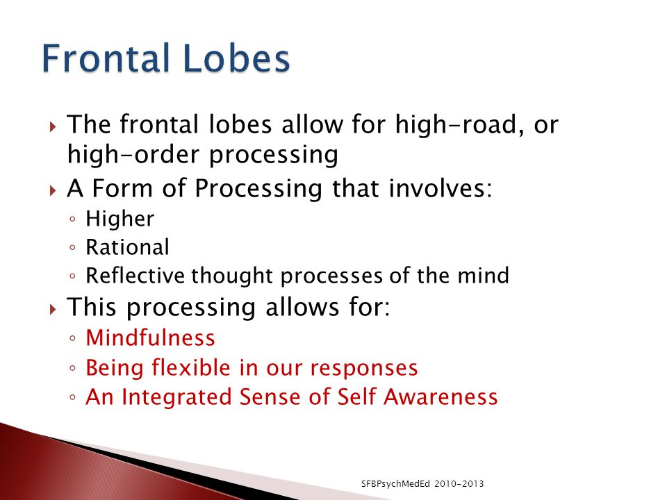 Frontal Lobes The frontal lobes allow for high-road, or high-order processing. A Form of Processing that involves: