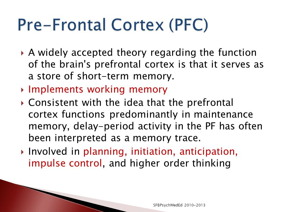 Pre-Frontal Cortex (PFC)