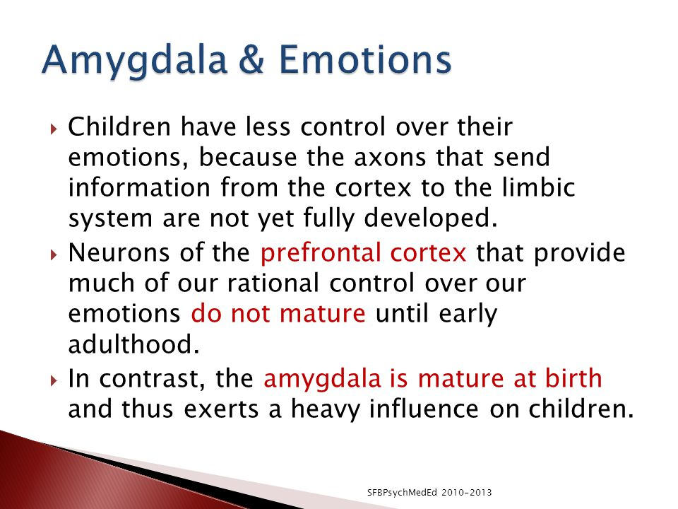 Amygdala & Emotions