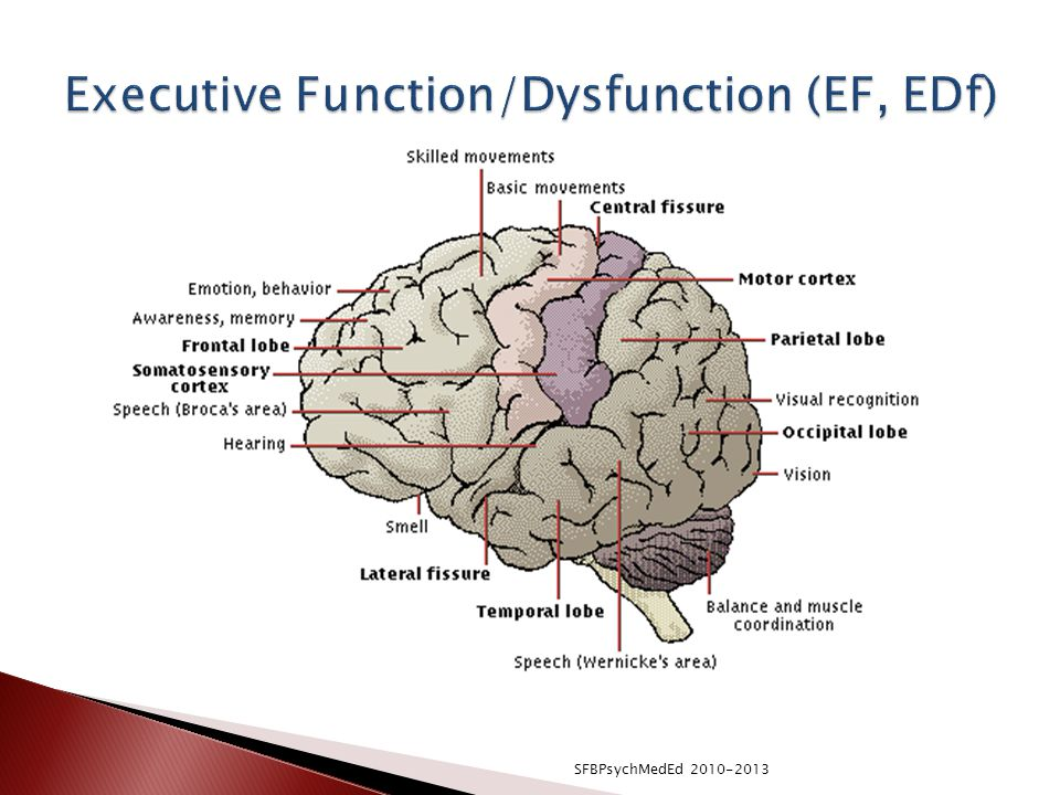 Executive Function/Dysfunction (EF, EDf)