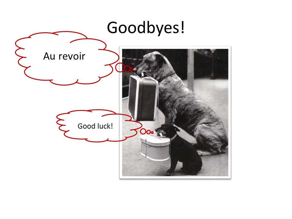 Goodbyes! Au revoir Good luck!