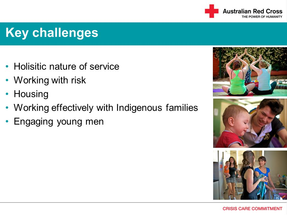 Key challenges Holisitic nature of service Working with risk Housing