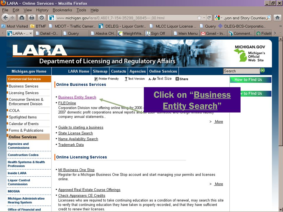 Click on Business Entity Search