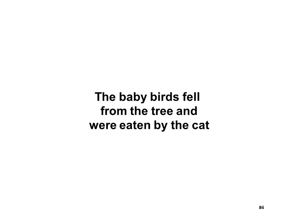 The baby birds fell from the tree and were eaten by the cat