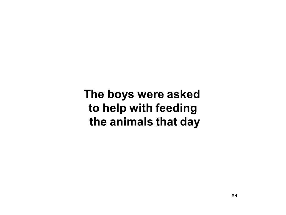 The boys were asked to help with feeding the animals that day