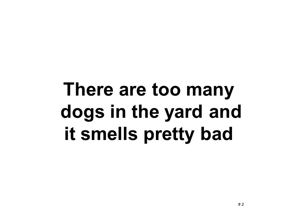 There are too many dogs in the yard and it smells pretty bad