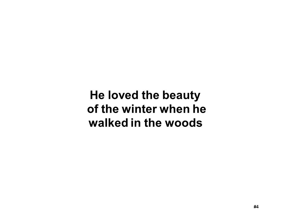 He loved the beauty of the winter when he walked in the woods