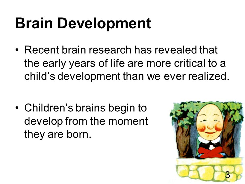 Brain Development Recent brain research has revealed that the early years of life are more critical to a child's development than we ever realized.