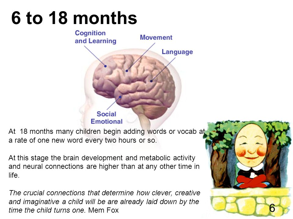 6 to 18 months At 18 months many children begin adding words or vocab at a rate of one new word every two hours or so.