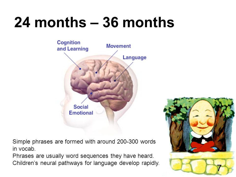 24 months – 36 months Simple phrases are formed with around 200-300 words in vocab.