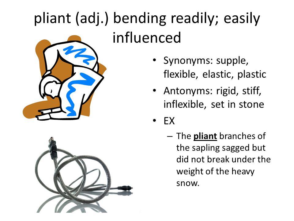 pliant (adj.) bending readily; easily influenced