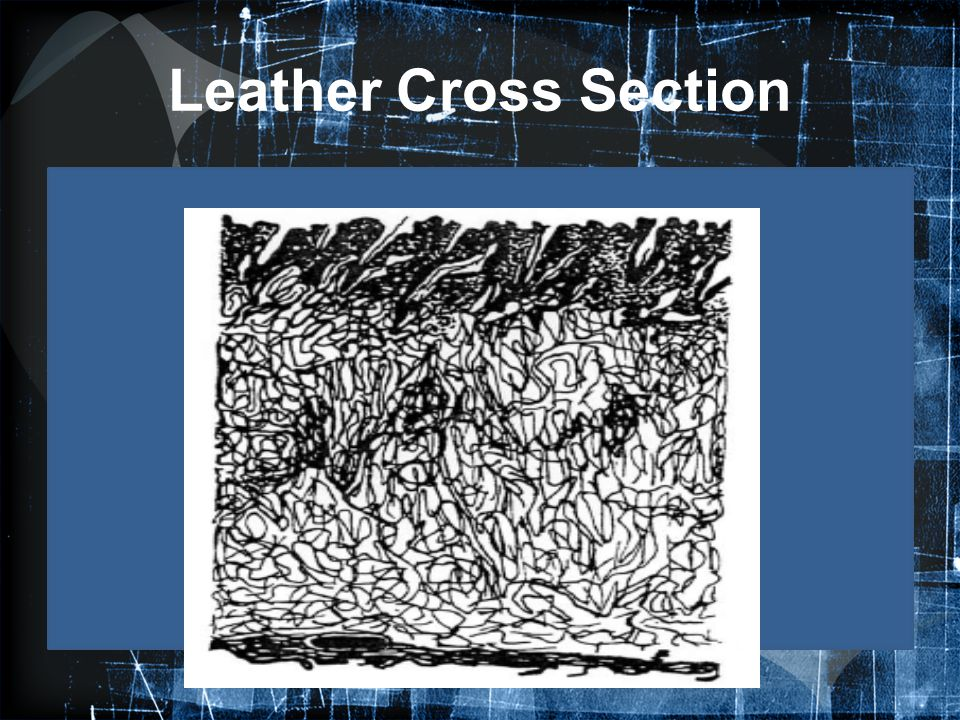 Leather Cross Section