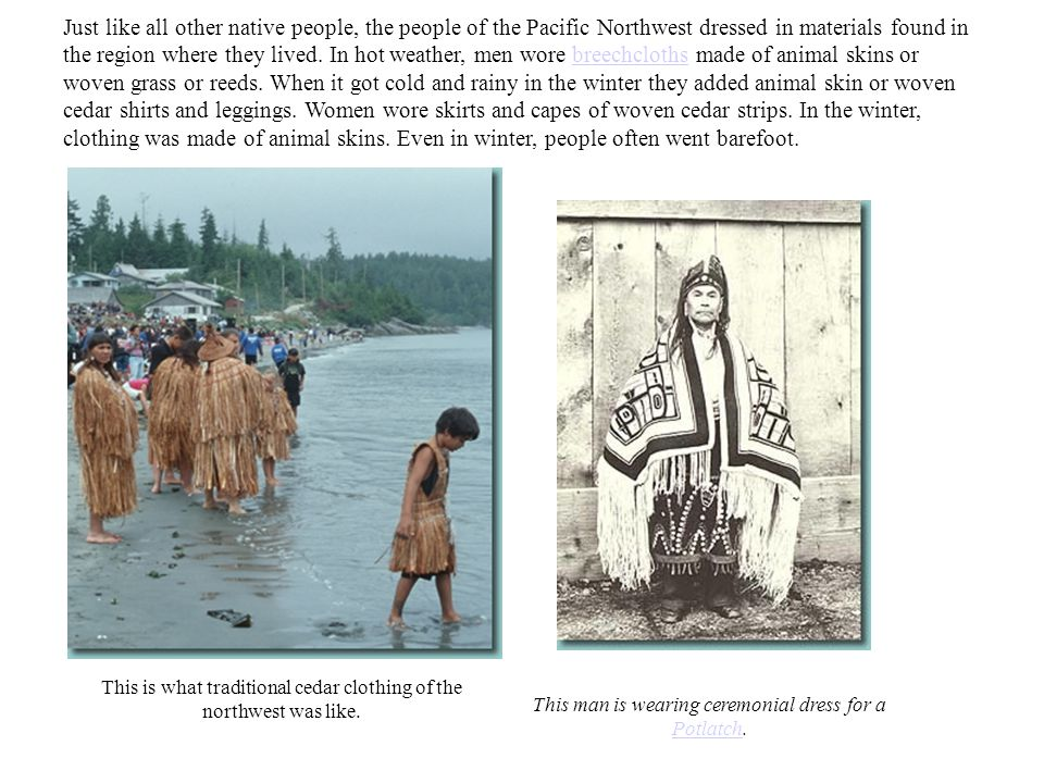 Just like all other native people, the people of the Pacific Northwest dressed in materials found in the region where they lived. In hot weather, men wore breechcloths made of animal skins or woven grass or reeds. When it got cold and rainy in the winter they added animal skin or woven cedar shirts and leggings. Women wore skirts and capes of woven cedar strips. In the winter, clothing was made of animal skins. Even in winter, people often went barefoot.