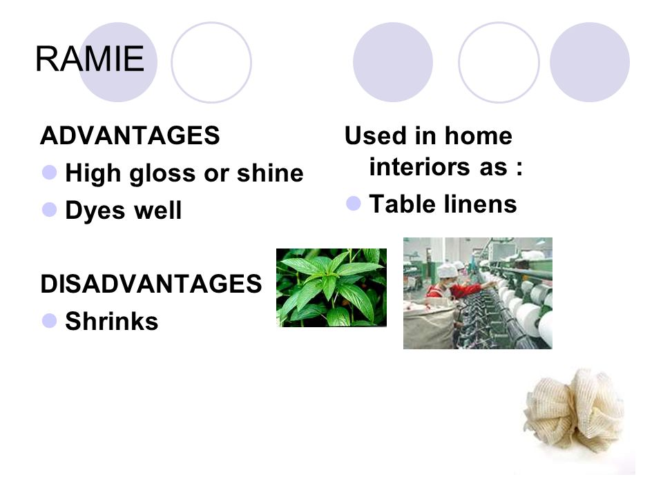 RAMIE ADVANTAGES High gloss or shine Dyes well DISADVANTAGES Shrinks