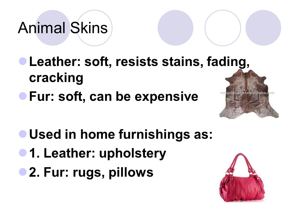 Animal Skins Leather: soft, resists stains, fading, cracking