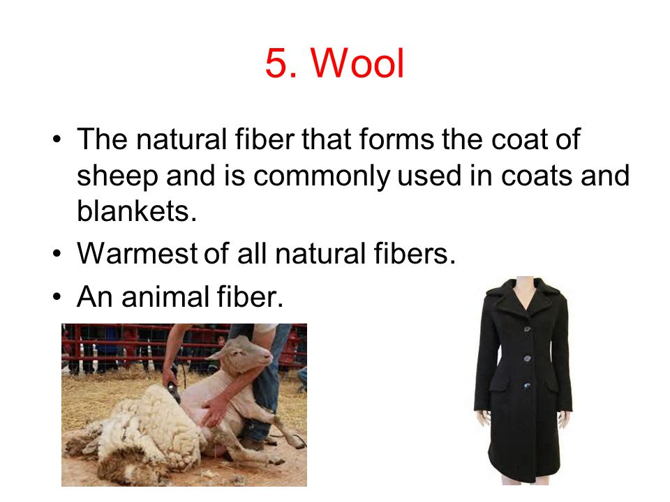 5. Wool The natural fiber that forms the coat of sheep and is commonly used in coats and blankets. Warmest of all natural fibers.