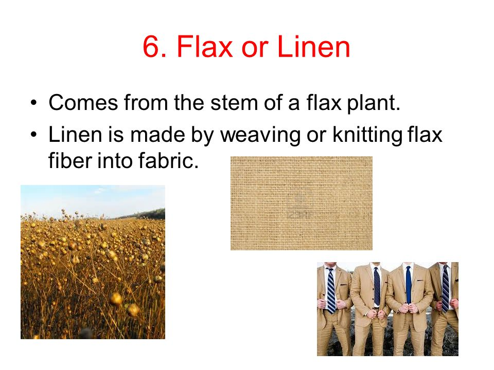 6. Flax or Linen Comes from the stem of a flax plant.
