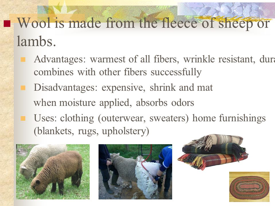 Wool is made from the fleece of sheep or lambs.