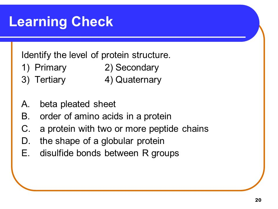 Learning Check Identify the level of protein structure.