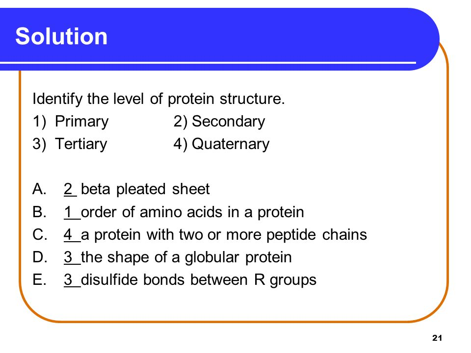 Solution Identify the level of protein structure.