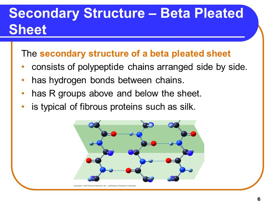Secondary Structure – Beta Pleated Sheet