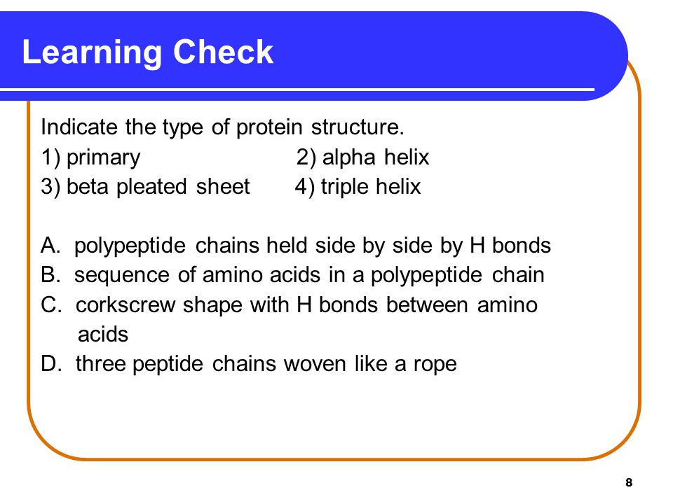 Learning Check Indicate the type of protein structure.