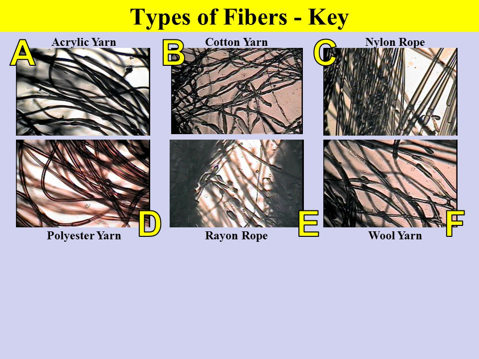 A B C D E F Types of Fibers - Key Acrylic Yarn Cotton Yarn Nylon Rope